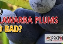 Do Illawarra Plums Go Bad