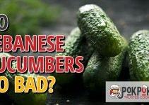 Do Lebanese Cucumbers Go Bad