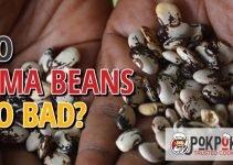 Do Lima Beans Go Bad?