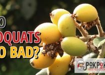 Do Loquats Go Bad