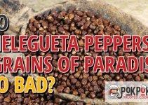 Do Melegueta Peppers Go Bad