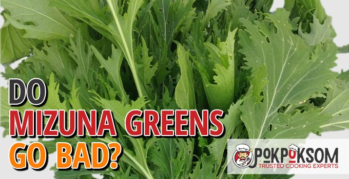 Do Mizuna Greens Go Bad
