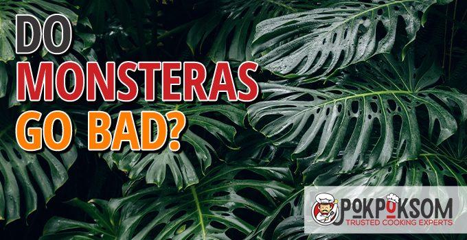 Do Monsteras Go Bad