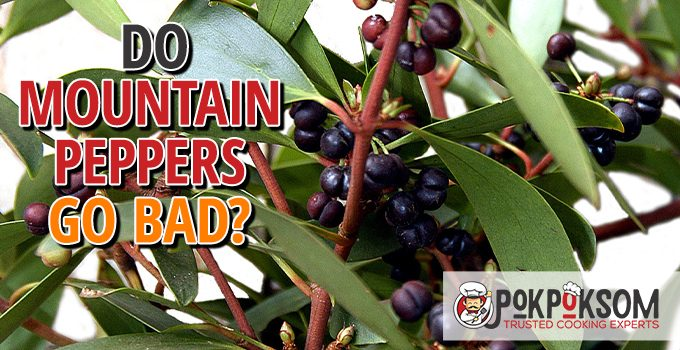 Do Mountain Peppers Go Bad