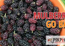Do Mulberries Go Bad