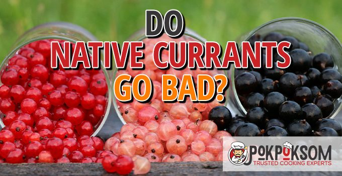 Do Native Currants Go Bad