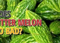Does Bitter Melon Go Bad