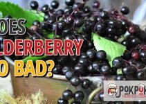 Does Elderberry Go Bad