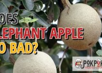 Does Elephant Apple Go Bad