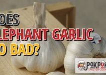 Does Elephant Garlic Go Bad