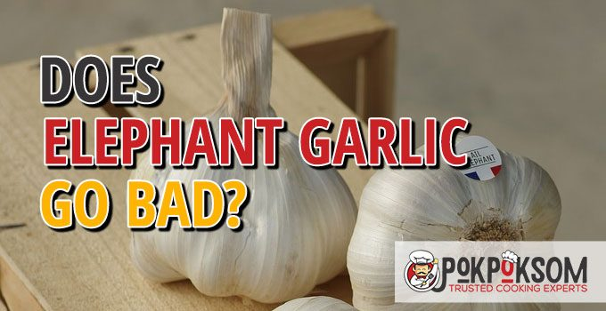 Does Elephant Garlic Go Bad