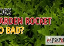 Does Garden Rocket Go Bad