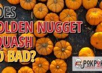 Does Golden Nugget Squash Go Bad