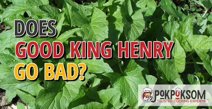 Does Good King Henry Go Bad