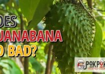 Does Guanabana Go Bad