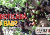 Does Jaboticaba Go Bad