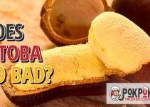 Does Jatoba Go Bad