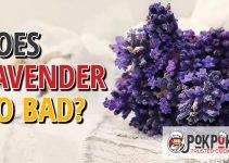 Does Lavender Go Bad