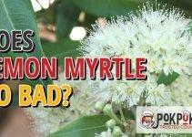Does Lemon Myrtle Go Bad?