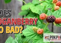 Does Loganberry Go Bad