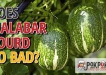 Does Malabar Gourd Go Bad?