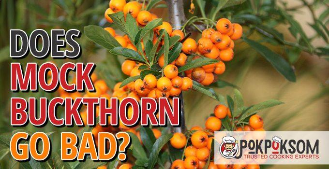 Does Mock Buckthorn Go Bad