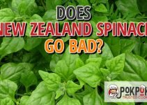 Does New Zealand Spinach Go Bad?