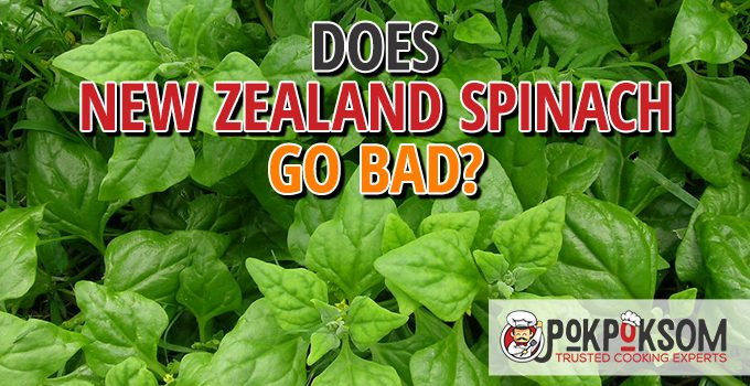 Does New Zealand Spinach Go Bad