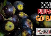 Does Nungu Go Bad