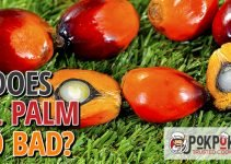Does Oil Palm Go Bad