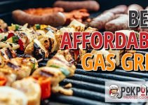 5 Best Affordable Gas Grills (Reviews Updated 2021)