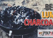 Best Lump Charcoals