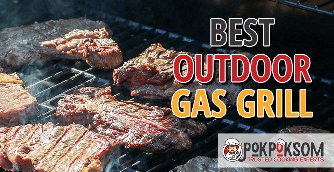 Best Outdoor Gas Grill