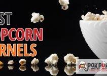 5 Best Popcorn Kernels (Reviews Updated 2021)