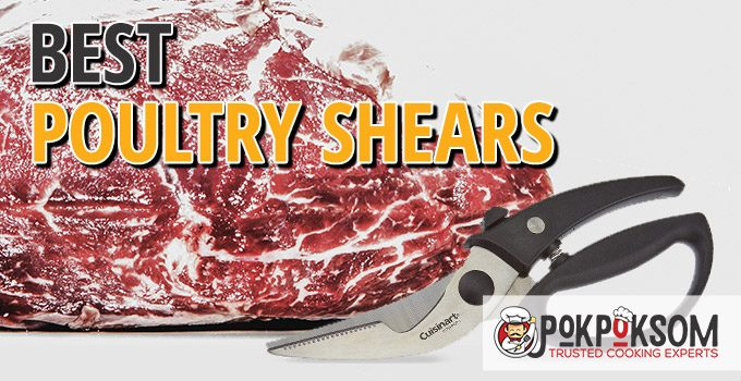 Best Poultry Shears
