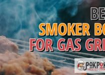 5 Best Smoker Box for Gas Grills (Reviews Updated 2021)