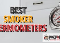 5 Best Smoker Thermometers (Reviews Updated 2021)