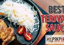 5 Best Teriyaki Sauces (Reviews Updated 2021)