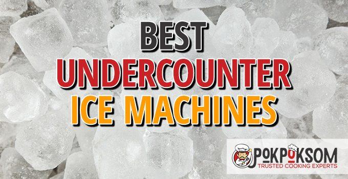 Best Undercounter Ice Machines