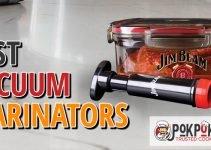 5 Best Vacuum Marinators (Reviews Updated 2021)