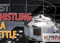 5 Best Whistling Tea Kettle (Reviews Updated 2021)