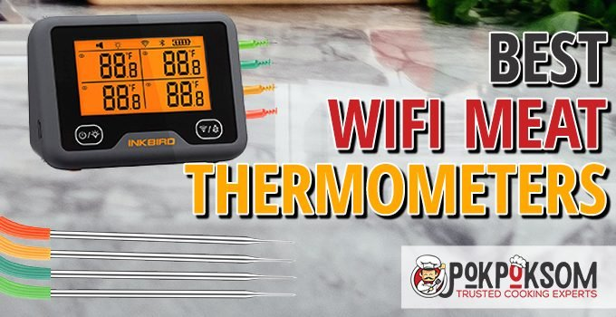 Best Wifi Meat Thermometers