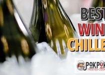 5 Best Wine Chillers (Reviews Updated 2021)