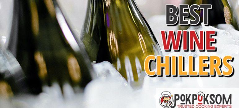 Best Wine Chillers