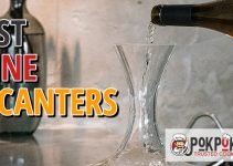 5 Best Wine Decanters (Reviews Updated 2021)