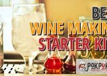 5 Best Wine Making Starter Kit (Reviews Updated 2021)