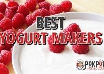 5 Best Yogurt Makers (Reviews Updated 2021)