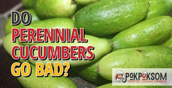 Do Perennial Cucumbers Go Bad
