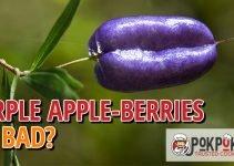 Do Purple Apple Berries Go Bad?