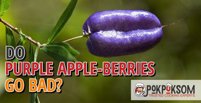 Do Purple Apple Berries Go Bad
